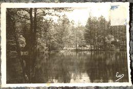 (54).BADONVILLER.ETANG DE LA HAUTE-MEULE.PHOTO VERITABLE.PEU COURANTE.CIRCULE 1951. - Autres Communes