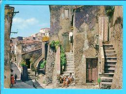 Cpa  Cartes Postales Ancienne  - Capoliveri Italie - Italia