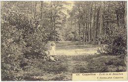 CAPPELLEN - Zicht In De Bosschen - F. Hoelen 496 - Kapellen