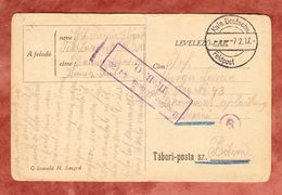 Karte Aus Ungarn, Gestempelt Kais. Deutsche Feldpost 1917 (47761) - Covers & Documents