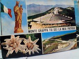 3 CARD CIMA E MONTE GRAPPA VEDUTE OSSARIO MADONNA MADONNINA  VB1964/68 GP22754 - Vicenza