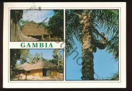 Gambia [KSACW 0.786 - Gambia