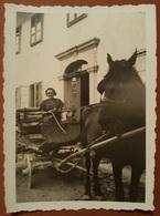Old Orig. Photo SKRAD Gorski Kotar Kocija Carriage With Hors Croatia 1924 - Photography