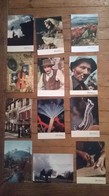 Lot De 12 Cartes Postales Photographe Albert MONIER - Monier