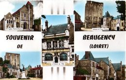 Beaugency  Souvenir  CPSM Petit Format - Beaugency