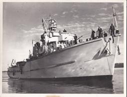 BATEAU De Guerre---ANGLAIS--M117SEFTON---1956-( Photo  23.5 Cm + 18 Cm )---voir  2 Scans - Bateaux