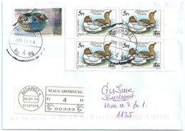 9787 Hungary Fauna Animal Bird Art Pottery China Porcelain RARE - Ducks