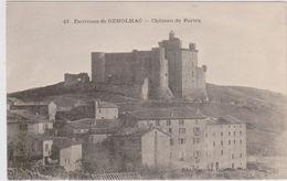 CARTE POSTALE   Environs De GENOLHAC 30  Château De Portes - Autres Communes