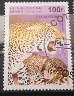 FRANCOBOLLI STAMPS BENIN AFRICA 1995 SERIE FELINI CON PICCOLI - Benin – Dahomey (1960-...)