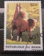 FRANCOBOLLI STAMPS BENIN AFRICA 1996 SERIE CAVALLI - Benin – Dahomey (1960-...)
