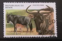 FRANCOBOLLI STAMPS BENIN AFRICA 1996 SERIE MAMMIFERI - Benin – Dahomey (1960-...)