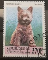 FRANCOBOLLI STAMPS BENIN AFRICA 1998 SERIE CANI - Benin – Dahomey (1960-...)
