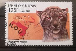 FRANCOBOLLI STAMPS BENIN AFRICA 1999 SERIE MAMMIFERI - Benin – Dahomey (1960-...)