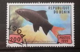 FRANCOBOLLI STAMPS BENIN AFRICA 1999 SERIE PESCI - Benin – Dahomey (1960-...)