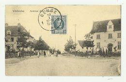 Winterslag  *  Avenue Des Chênes - Genk
