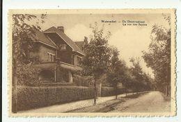 Waterschei  *  De Dennenstraat - La Rue Des Sapins - Genk