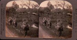 GUECHAS GOÛTANT Les DÉLICES D'une PROMENADE MATINALE HIKONE JAPON 1880/1900 ( PHOTO STEREOSCOPIC ) - Photos Stéréoscopiques