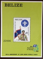 Belize 1982 Scouts Minisheet MNH - Belize (1973-...)