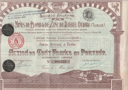 ACTION DE 100 FRS - S.A . DES MINES DE PLOMB ET DE ZINC DU DJEBEL OUDIBA -TUNISIE - 1924 - Mines