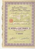ACTION DE 100 FRS - SOCIETE MINIERE DU DJEBEL-BOU -MOUSS - TUNISIE - ANNEE 1930 - Mines