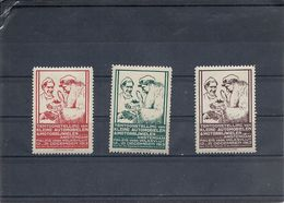 ERINNOPHILIE - PAYS BAS - AMSTERDAM 1913 - 3 Vignettes Expo Véhicules Miniatures - Très Beau - Erinnophilie