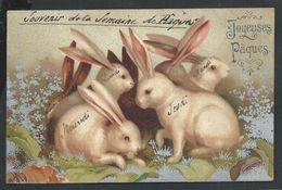 +++ CPA - Carte Fantaisie - Pâques - Lapin - Fond Argent   // - Pâques