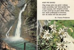Dr France Preseren - Krst Pri Savici - Slovenia