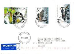 Finlande. Finland. Pics. Woodpeckers. - Climbing Birds