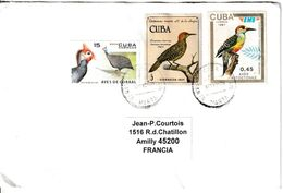 Cuba. Pic De Fernandina Et Pic à Sourcils Noirs; Lettre Pour La France - Climbing Birds
