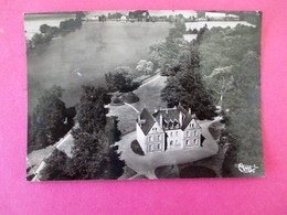 Cpsm AZY Le VIF Vue Aerienne Du Chateau De La Prosle Et Son Etang - Autres Communes