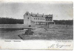 Westmalle, Sanatorium, Verstuurd 1906? - Malle