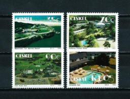 Ciskei  Nº Yvert  223/6  En Nuevo - Ciskei