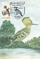 BIRDS, HOOPOE, CM, MAXICARD, CARTES MAXIMUM, 1993, ROMANIA - Climbing Birds