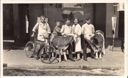 16371.....MONTANA, Boucherie Rey - VS Wallis