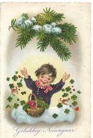 Bonne  Année   Gelukkig Nieuwjaar - Nouvel An
