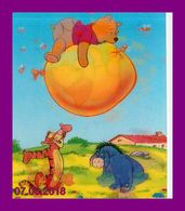 Théme Walt Disney * Carte Vision Relief * Ps 234    Winnie The Pooh      ( Voir Scans Recto-Verso ) - Sonstige
