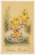 Gelukkig Paasfeest, 1960 Dutch Postcard - Easter