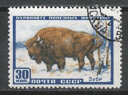 Russia 1957. Scott #1920 (U) Animal, Bison * - 1923-1991 URSS