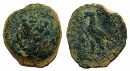 Coin PTOLEMY II TOLOMEO II FILADELFO Philometor Alexandria  285 A.C.-246 A.C.Egypt Israel Lebanon Jordan Palestine Libya - Orientales