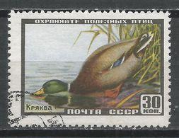 Russia 1957. Scott #1921 (U) Animal, Mallard, Duck * - 1923-1991 URSS