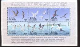 MALDIVES     2624  MINT NEVER HINGED MINI SHEET OF BIRDS   #   M-637-1  ( - Uccelli