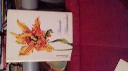 Barocke  Blumenlus Par Neumann Ed Georg Westermann Verlag Tres Belles Illustrations - Nature