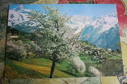Afganistan. Kabul  - Old Postcard 1970s - Afghanistan