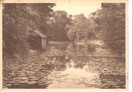 La Ramée - CPA - L'étang - België