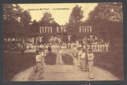 7958-METTRAY-COLONIE-LA GYMNASTIQUE-1908-ANIMATION- FP - Mettray