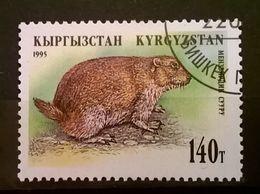 FRANCOBOLLI STAMPS KIRGHISTAN KYRGYZSTAN 1995 SERIE FAUNA - Kirghizstan