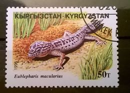 FRANCOBOLLI STAMPS KIRGHISTAN KYRGYZSTAN 1996 SERIE RETTILI - Kirghizstan
