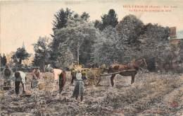51 - MARNE/ 513762 - Meix Tiercelin - La Récolte Des Pommes De Terre - Beau Cliché Animé - Francia