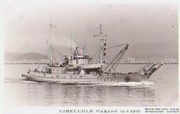 Gabare        887       Libellule Gabare - Cargos