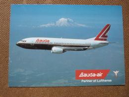 LAUDA AIR  B 737 300          AIRLINE ISSUE / CARTE COMPAGNIE - 1946-....: Moderne